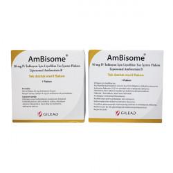 Купить Амбизом (Ambisome) пор. для инъекций 50мг №1 в Краснодаре