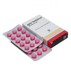 Купить Гино-Тардиферон (Gyno-Tardyferon) таблетки п/о 80 0,35мг №30 в Краснодаре