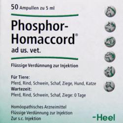 Купить Фосфор гомаккорд для собак (Phosphor-Homaccord Heel) ампулы №50 в Краснодаре